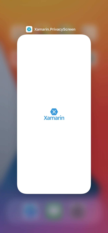 iOS: Privacy screen
